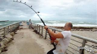Extreme Saltwater Fishing!(You may live your life and never see anything like this! The entire Sebastian inlet was filled with pinfish. The tarpon, redfish and snook were so thick you could ..., 2011-12-12T12:21:42.000Z)