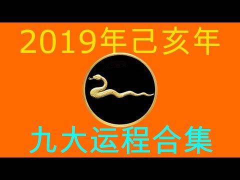 2019年己亥年九大运程大合集:肖蛇者