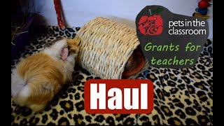 Pets In the Classroom Grant 2018-2019 | 6 Classroom Guinea Pigs