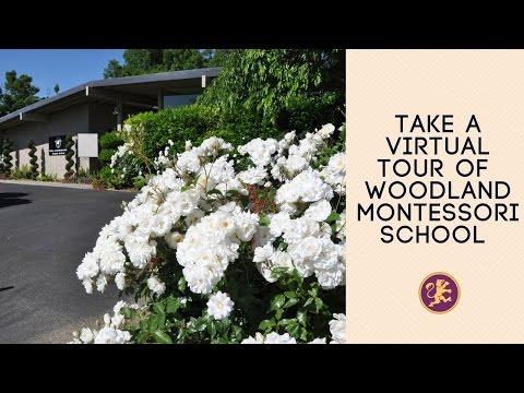 Take a Virtual Tour of Woodland Montessori School