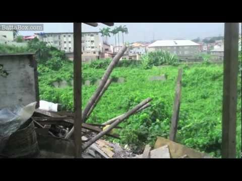 Nigeria: 'Monkey Village' hidden in Ikeja, Lagos