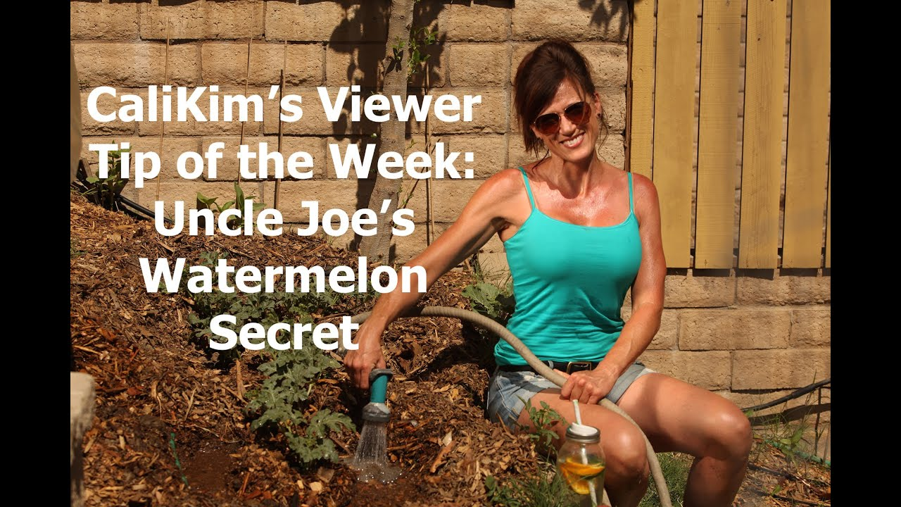 CaliKim\'s Viewer Tip of the Week: Uncle Joe\'s Watermelon Secret ...