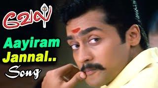 Vel | Tamil Movie Video Songs | Vel Songs | Aayiram Jannal Song | Suriya Best hits | Yuvan best hits