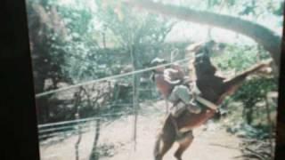 el llorar del tlalchilnol cruztomahuac guerrero mexico.wmv