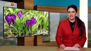 Jahresrückblick - März 2019