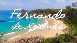 A wonderful trip to Fernando de Noronha, the Brazilian Paradise (4k)