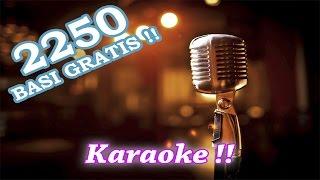 Programma Karaoke + 2250 basi per karaoke ITALIANE Gratis!  [ArmaDisk ITA].mp4