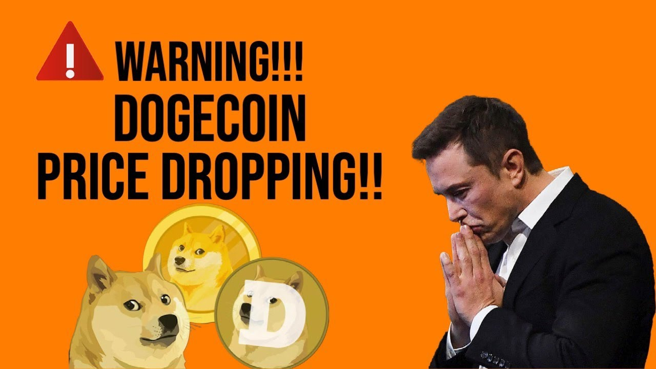 Bitcoin, Dogecoin prices fall after Musk says Tesla is dropping Bitcoin