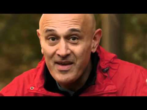 The Secrets of Quantum Physics 2of2 Let There be Life - Watch Documentary (BBC Four)