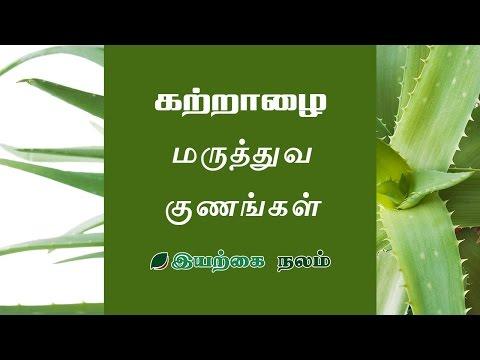 Aloe vera Uses in Tamil | Katralai Uses | Sotru Katralai | கற்றாழை ஜெல் | கற்றாழை