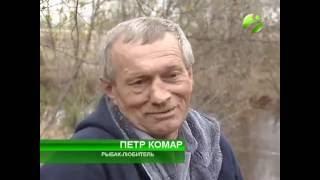 Житель Ноябрьска неожиданно поймал пиранью. Настоящую