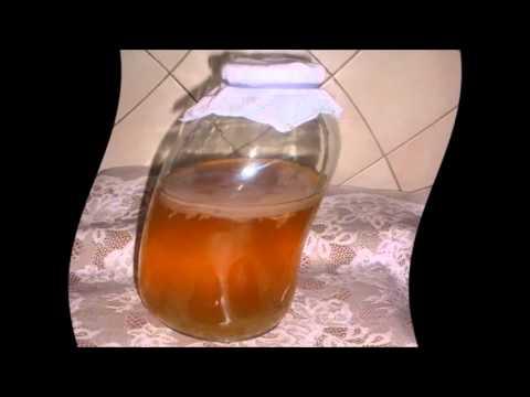 Как приготовить чайный гриб