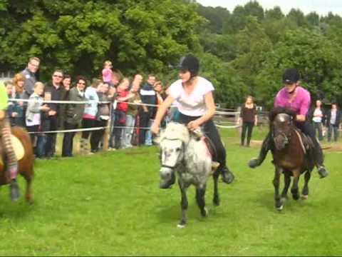pony rennen
