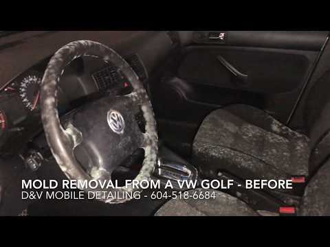 Mold Removal Acura Integra