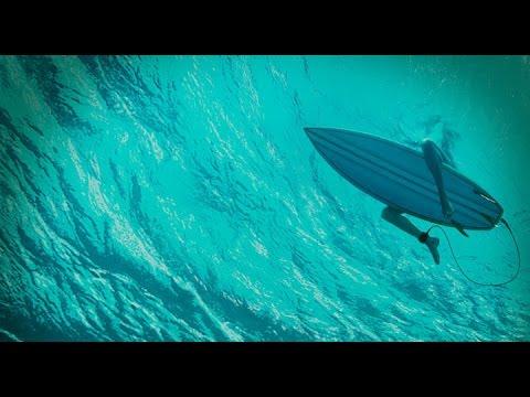 Отмель / The Shallows - трейлер