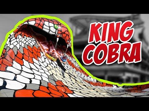 KING COBRA - AMAAZIA WATER PARK