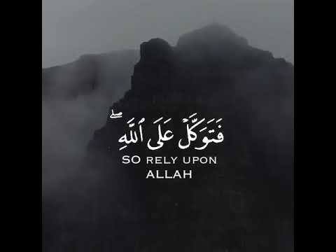 so rely upon allah