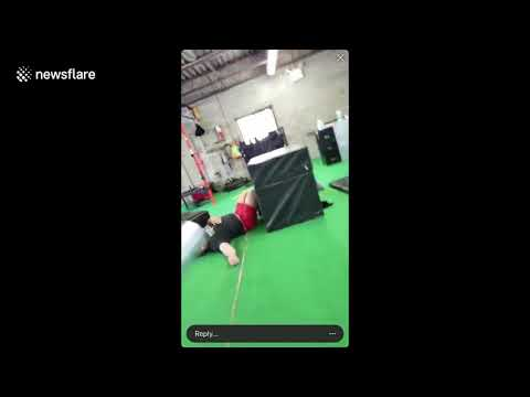 Eddie & Rocky - VIDEO: When Box Jumping Goes Horribly Wrong