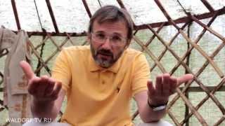 видео Вальдорф