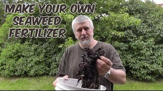 Make Your Own Seaweed Fertilizer