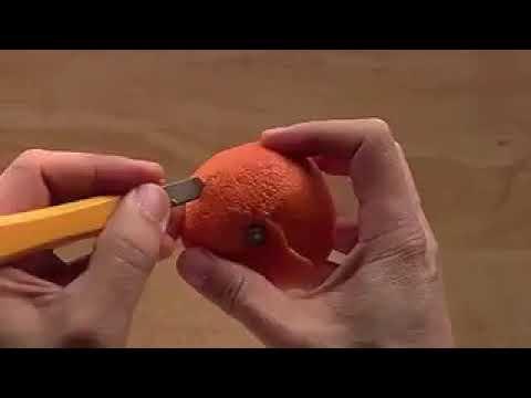 Making animal shape on orange peel