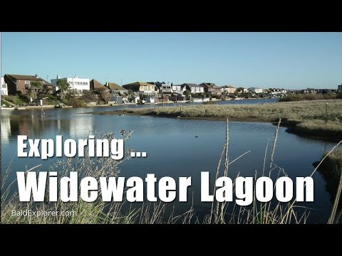 Sussex Walks: Exploring Widewater Lagoon