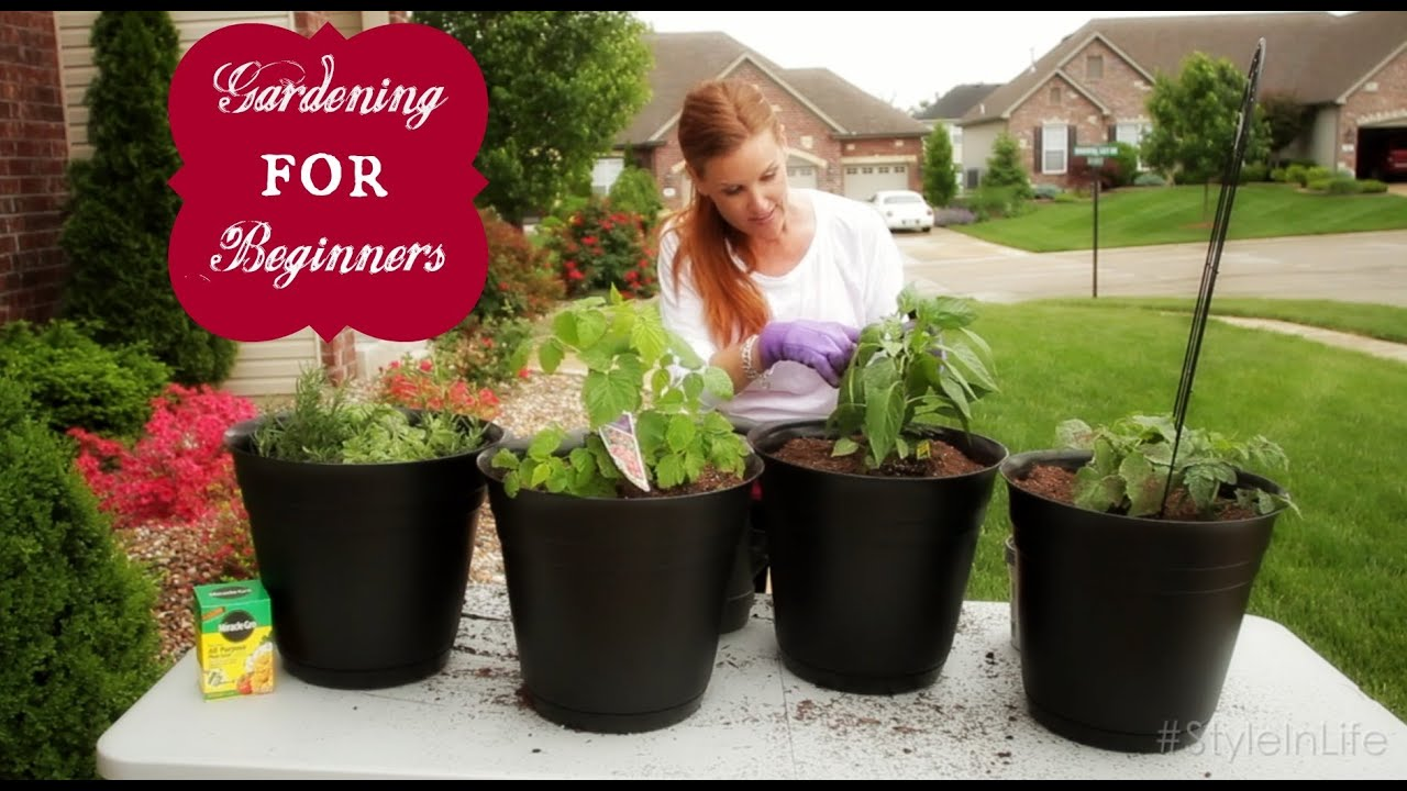 How to Plant an Easy Beginner Garden YouTube