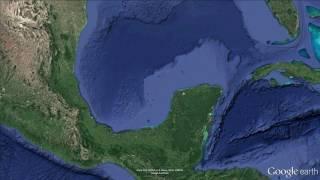 Damisela Real del Indo-Pacifico en el Sureste del Golfo de México