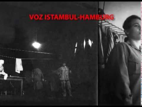 Pedja Vranesevic: TRAIN ISTAMBUL-HAMBURG  ELECTRONIC/PUNK 1976. GASTARBEITER OPERA