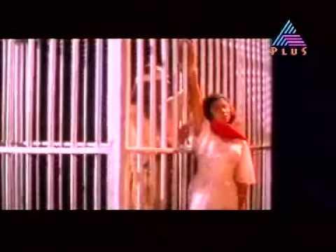 Rajahamsame Lyrics - Chamayam Malayalam Movie Songs Lyrics