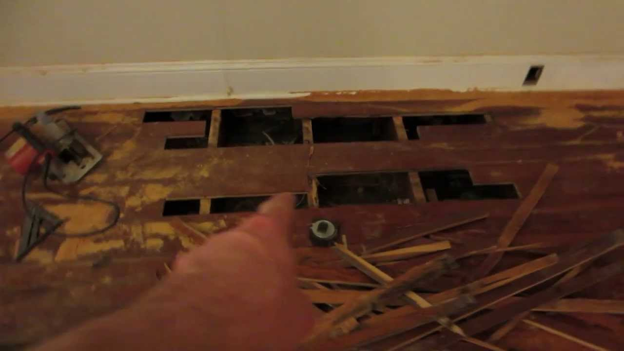 Termites Hardwood Floor Disaster Youtube