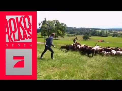 Schäfer Joko & Klaas: Bringt eure Schäfchen ins Trockene | Spiel 3 | Joko & Klaas gegen ProSieben from YouTube · Duration:  12 minutes 1 seconds