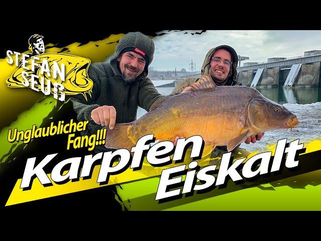 KARPFEN und HECHTANGELN bei EIS und SCHNEE | Unglaublicher FANG!!! | Köderfisch und Boilie im Winter