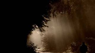 Alleluja on jest światłem