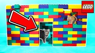 I BUILT MY CATS A LEGO HOUSE!