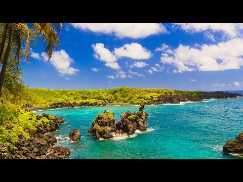 Maui Hawaii Top Things To Do | Viator Travel Guide