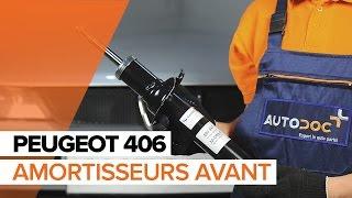 Réparation PEUGEOT 406 par soi-même - voiture guide vidéo