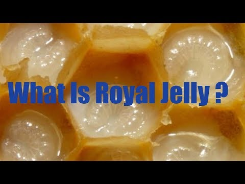 What Is Royal
