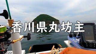 2馬力ゴムボート㏌香川 魚探があっても魚が、、、