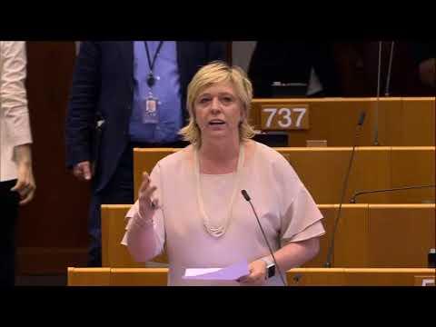 Hilde Vautmans 03 May 2018 plenary speech on the Future of Europe