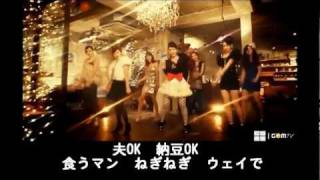 T-ARA  『Why Are You Being Like This』 空耳カラオケ (練習用)