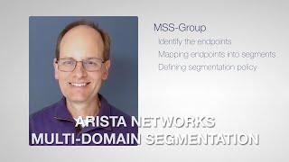 Arista Multi-Domain Segmentation