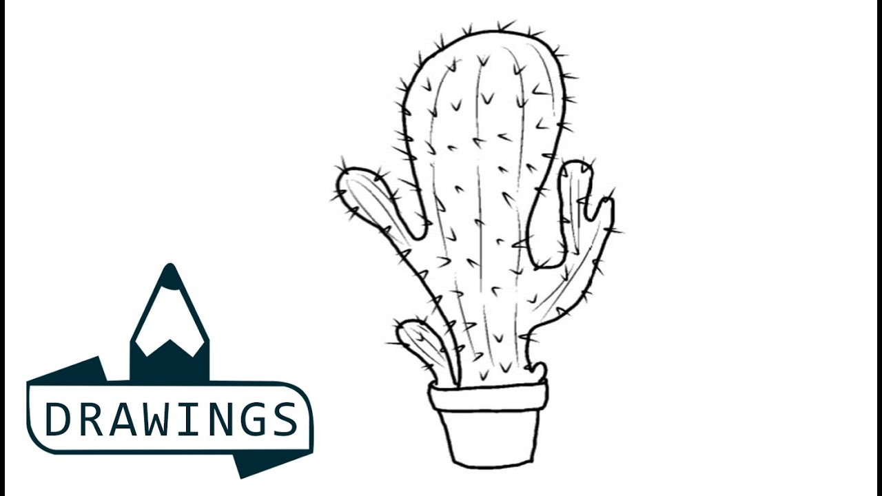 speed drawing how to draw a cactus plant youtube. Black Bedroom Furniture Sets. Home Design Ideas