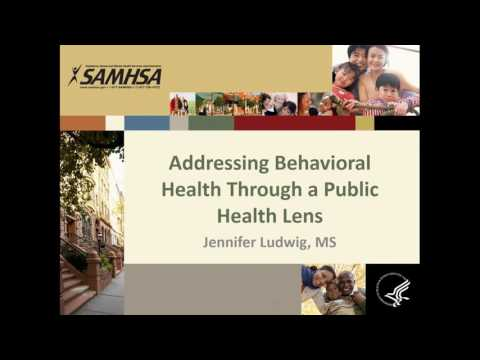 Public Health Approaches to Whole Health for Individuals with Behavioral Health Conditions