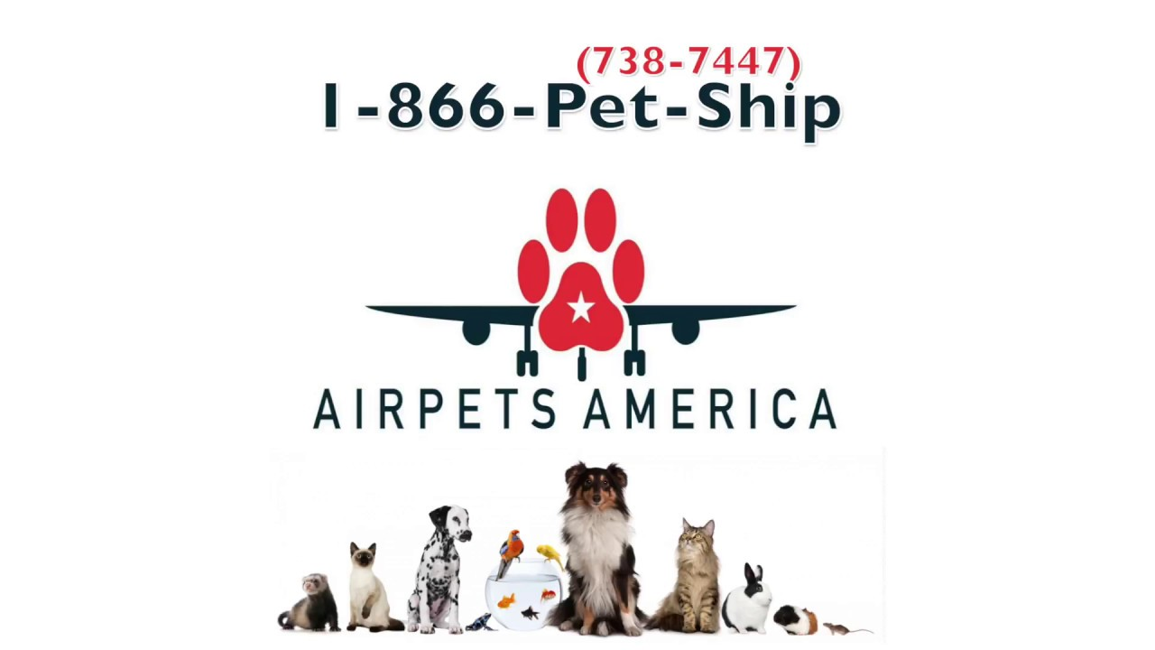 Pet Relocation Services - Hurst, Texas - 1-866-738-7447