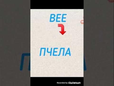 Как переводится слово bee