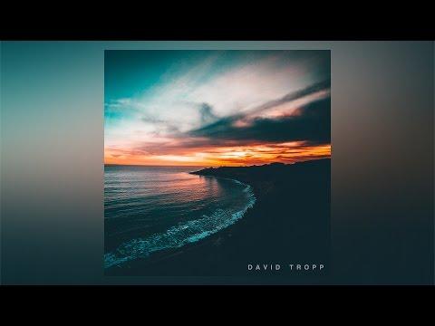 David Tropp - Lake Forest (Home)