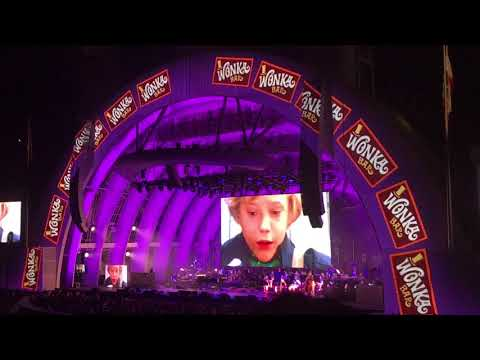 Willy Wonka Live Concert Part 1