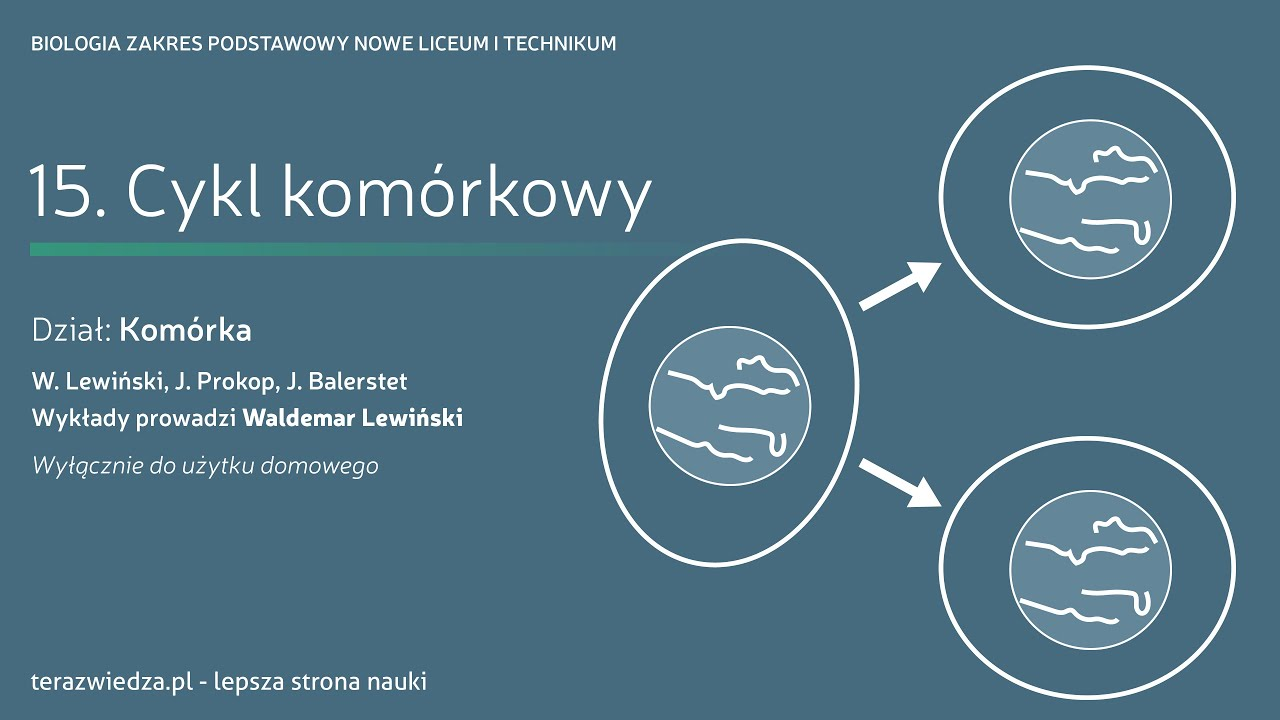Lekcja 15. Cykl komórkowy