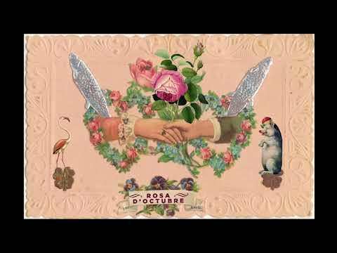 Marc Parrot - rosa d'octubre